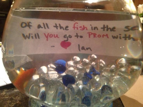 funny-prom-proposals-fish-sea